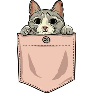 Cute cat pocket Thumbnail
